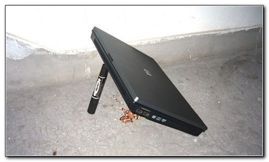 Laptops Mouse Trappers