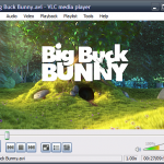 Download Portable VLC Media Player